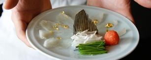 mikuni's fugu indulgences panel-gourmet adventures